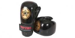 Point Fighting Gloves
