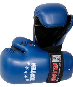 TKD Gloves